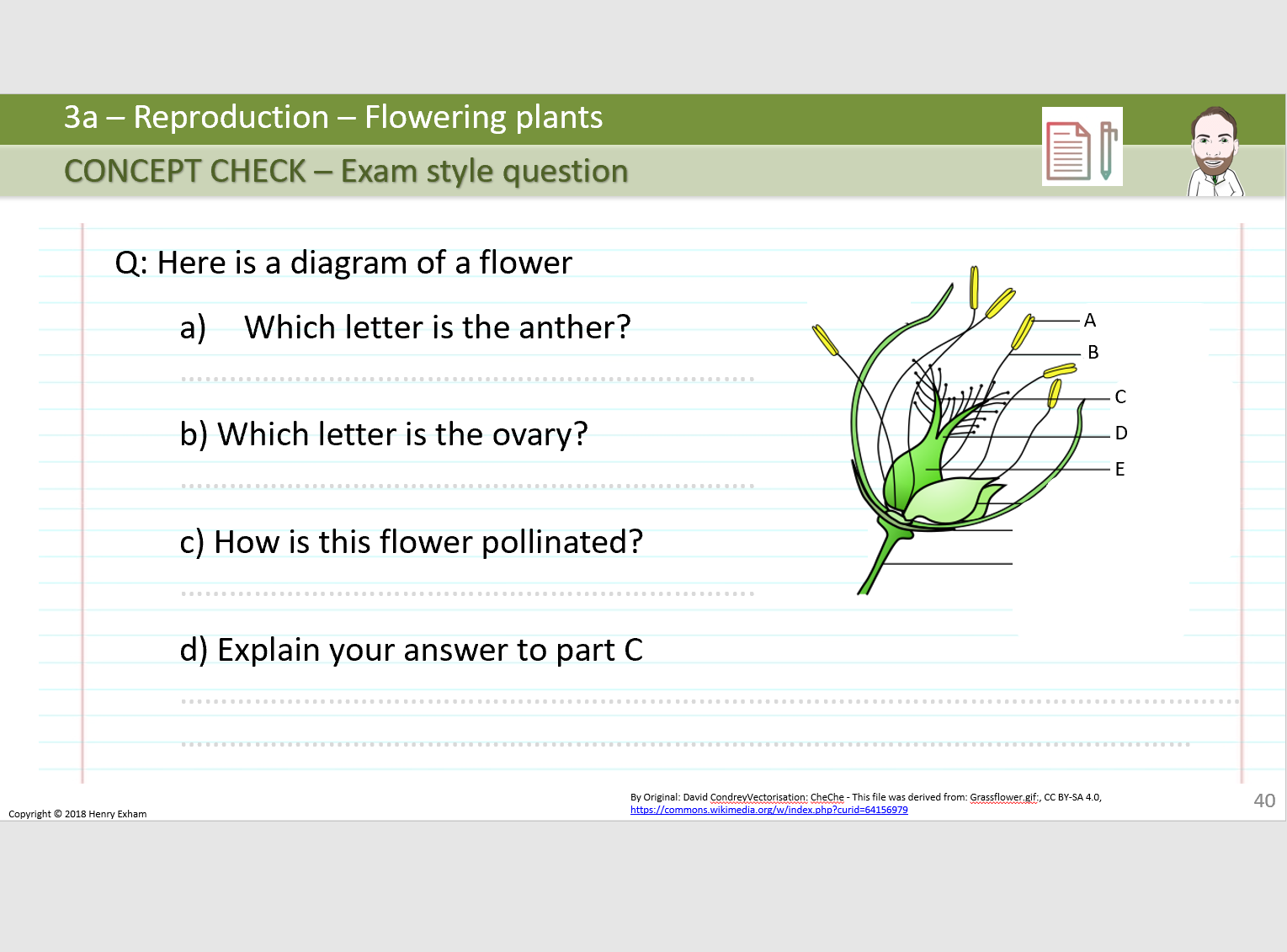 3a Reproduction - Flowering Plants